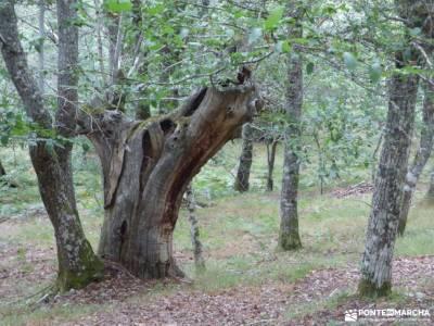 Bierzo lugar de Naturaleza;ruta gredos escapada agosto senderismo en huesca senderismo avila